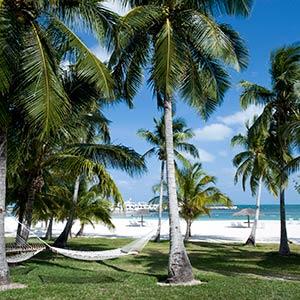Guana Cay in Abaco, Bahamas