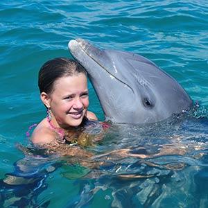 Swimming with dolphins, Grand Bahama, Bahamas